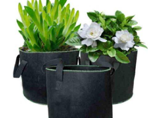 garden in a bag