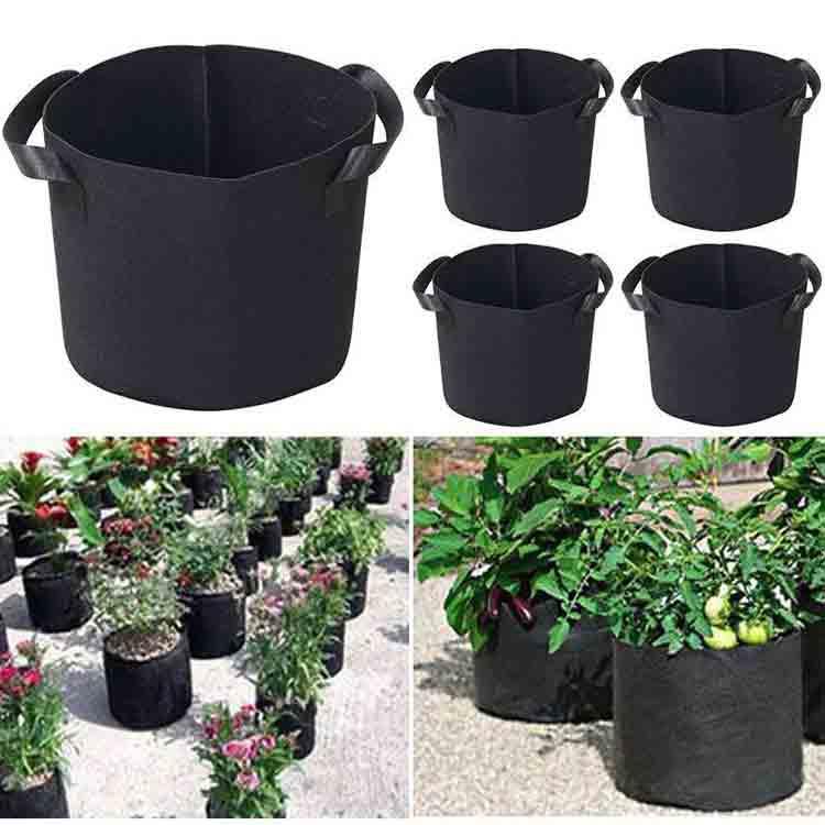 grow bag gardening 5