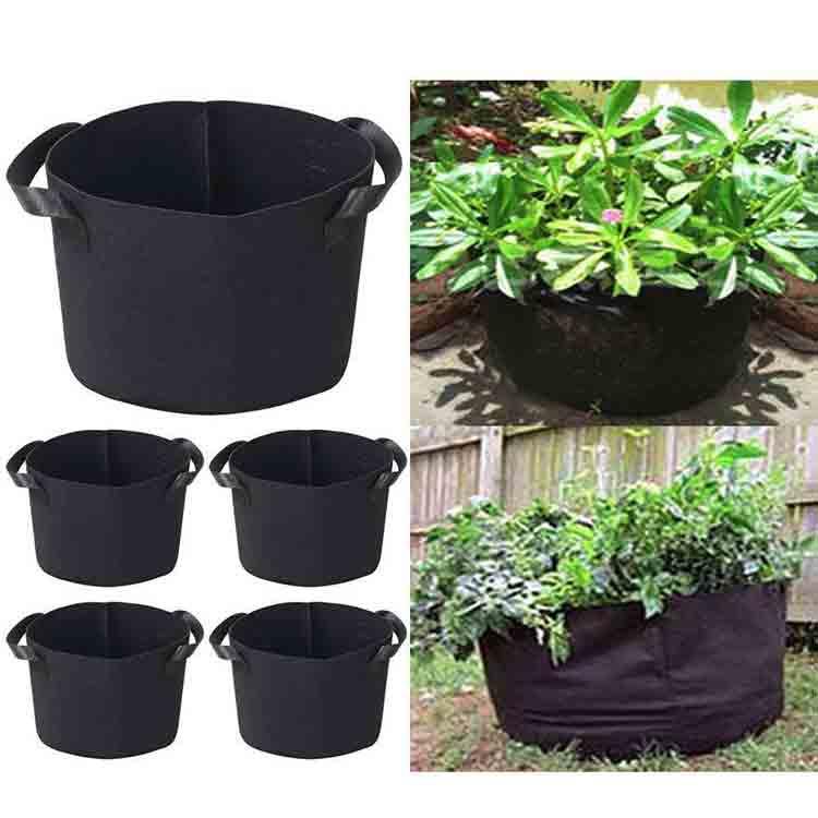 grow bag gardening 6