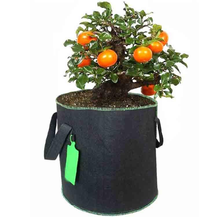 sacos de cultivo de vegetais